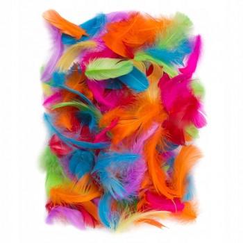 PIÓRKA dekoracyjne kolorowe 10g