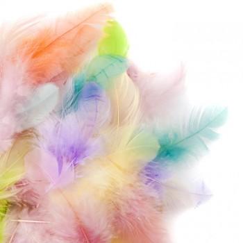 PIÓRKA dekoracyjne kolorowe pastel 5g